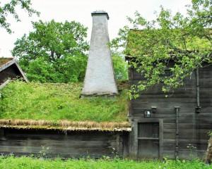 grönt tak timmerhus hus